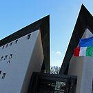 Ambasciata d'Italia a Washington -- The Italian Embassy in Washington by Cora Wandel
