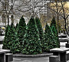December 21, 2013 ...a place in New York City by Poete100