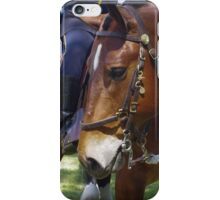 Gallant Steed iPhone Case/Skin