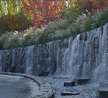 Waterfall at Nike Campus in Portland by Edith Farrell