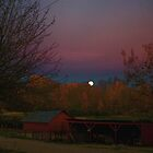 Country Moon by Terry Arcia