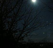 A cold dark winters night by Tena B.