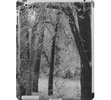 Monochrome Glade iPad Case/Skin