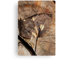 Beauty Of A Leaf Canvas Print