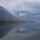 Reflection Lake Bohinj, Slovenia by oscars