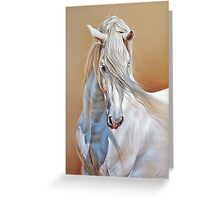 Andalusian stallion Greeting Card