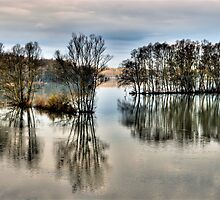 Flooded Landscape by niklens