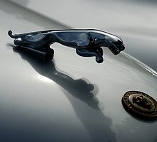 Jaguar 120 XK Bonnet Mascot close-up 1 by ragman