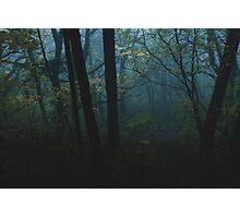 Moonglade Photographic Print