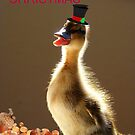 Merry Christmas - Duckling - NZ by AndreaEL