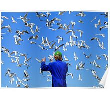 Experience Life In 3D! - Seagulls - NZ Poster
