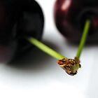 Cherries by stephA