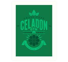 Celadon Gym Art Print