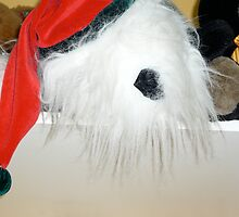 Santa? by D. D.AMO