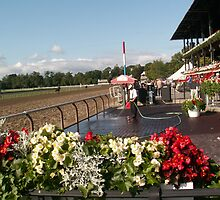 Saratoga Winners Circle (zoomed out) by knucklebuster