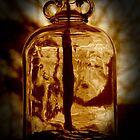 The Penny Jar by Sean Crease