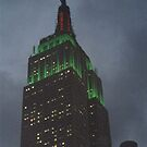 Empire State Bulding by mgoldst712