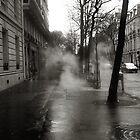 Hot asphalt in the rain  by mkl .