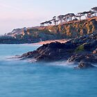 Roseland Peninsula, Cornwall by Colin Bowdery