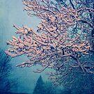 Snow Day by sandra arduini