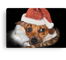 And what do I get for Christmas ? Canvas Print