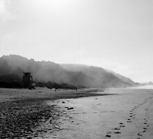 Stinson Beach, CA by tonyell