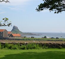 Holy Island Castle by Mandy Fell