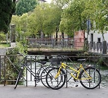Bicycles by the river by Paris Franz