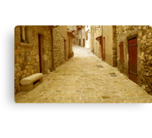 Alone on the lane Canvas Print