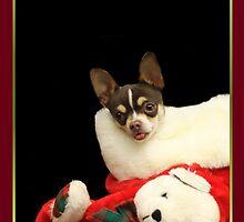 Christmas Chihuahua Dog by ritmoboxers