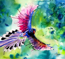 Formosan Magpie by IsabelSalvador