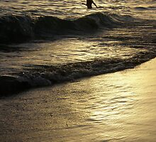 Lonely swimmer by pbeltz
