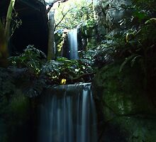 First Falls by nimbusphoto