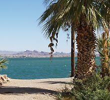Lake Havasu View California Side by tvlgoddess