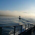 The fog.  by SunKen