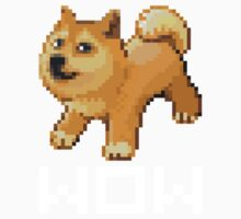Pixel Doge Wow Kids Clothes