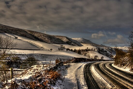Tracks In The Snow by Dave Warren