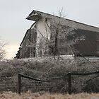 Barn Near Home by Nicki Kenyon