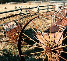 #257     Wheels, Fences, and Sheep by MyInnereyeMike