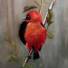 On Safari - Red Bishop Bird by Carrie Jackson