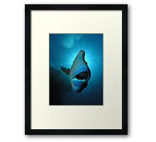 Saint Wally!!! The last in the series Framed Print