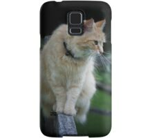 The cat that love to come walking Samsung Galaxy Case/Skin