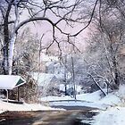 Winter Wonderland by Nadya Johnson