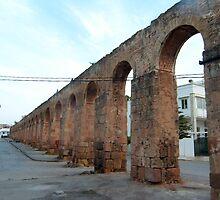 Roman Aqueduct, Tunis by Tom Gomez