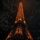 Uprooted Eiffel by lauren ashley