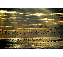 Sunrise on Ocracoke Island, North Carolina USA Photographic Print