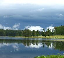 storm brewing over Lake Macdonald Cooroy Botanic Gardens by Belinda Cottee