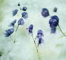 Memories of Spring by Priska Wettstein