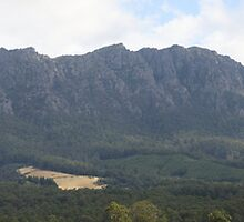 Mt Roland Panorama by Martin Hampson