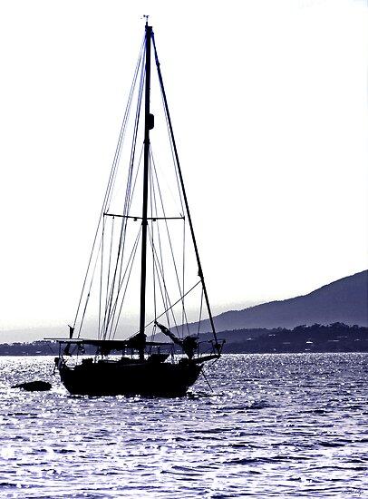 Twilight Bay by Holly Kempe